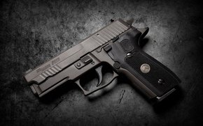 Picture gun, background, SIG Sauer, P229