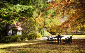 Picture autumn, trees, Park, table, foliage, benches