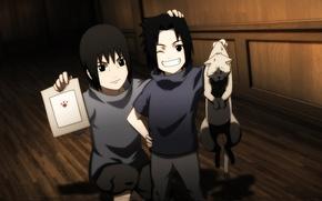 Picture cat, smile, art, Anime, Sasuke, Naruto, Naruto, Uchiha Itachi, Uchiha, Uchiha Sasuke, The Uchiha Will …