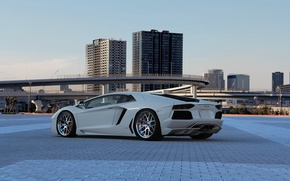Picture white, the sky, overpass, white, lamborghini, rear view, aventador, lp700-4, Lamborghini, aventador