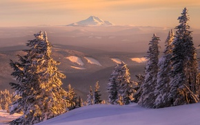 Picture winter, forest, snow, landscape, sunset, mountains, nature, view, tree, ate, horizon, the snow