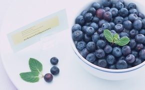 Picture blueberries, berry, plate