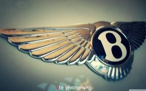Picture car, logo, bentley, goodlife
