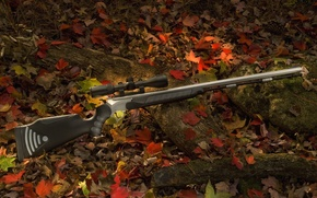 Wallpaper forest, weapons, foliage, rifle, opticoat