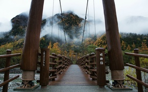 Picture trees, bridge, fog, Japan, Japan