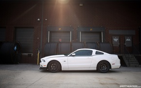 Picture light, mustang, 2013