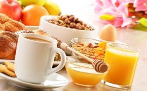 Picture coffee, food, Breakfast, cookies, juice, honey, spoon, Cup, fruit, nuts, saucer, cakes, buns, muesli, orange, ...