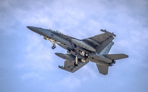 Picture weapons, the plane, F-18 Fighter