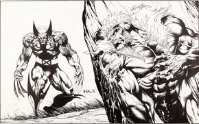 Picture figure, Wolverine, Logan, Wolverine, comic, marvel, Marvel Comics, James Howlett, James Howlett, Sabretooth, Sabretooth, Victor …