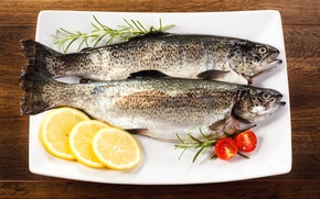 Picture fish, trout, lemon, rosemary, tomato