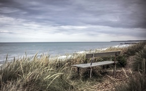 Picture sea, shore, bench