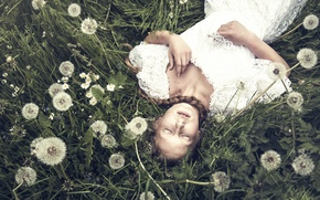Picture girl, braid, dandelions, Thinloh