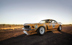 Picture Mustang, Ford, Boss 302, muscle car