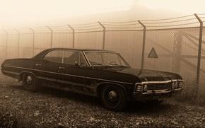 Picture sign, the fence, 1967, sedan, supernatural, hardtop, Сhevrolet Impala, pestka
