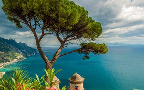 Picture sea, the sky, clouds, flowers, mountains, tree, coast, height, horizon, Italy, Sunny, the view from ...
