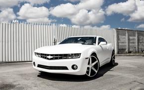 Picture Chevrolet, Camaro, Wheels, Concave
