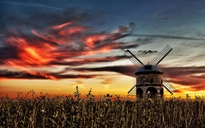 Picture field, sunset, mill