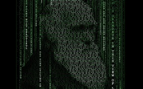 Picture typography, matrix, Darwin