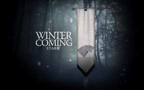 Picture flag, the series, winter, krastaa, stark, games of thrones, Sean bean, winter is coming, Wallpaper, ...