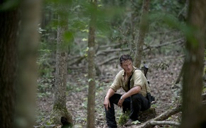 Picture forest, trees, The Walking Dead, Rick Grimes, The walking dead, Andrew Lincoln