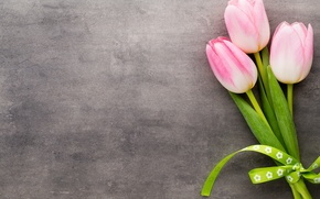 Wallpaper flowers, still life, tulips
