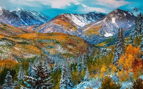 Picture autumn, forest, snow, trees, mountains