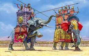 Picture elephant, warriors, army, the crew, Indian, the North African forest elephant., armies, before the battle, …
