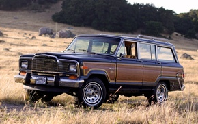 Picture background, SUV, Jeep, the front, Jeep, Limited, 1982, Wagoner, Wagoneer