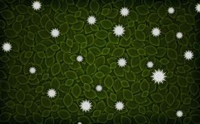 Wallpaper leaves, flowers, minimalism, vector, 152