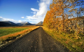 Picture road, field, autumn, the sky, trees, mountains