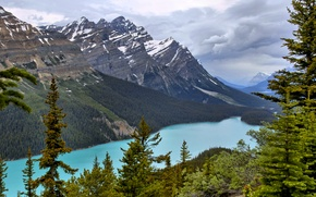 Wallpaper Peyto Lake, mountains, trees, lake, Canada, the sky, Banff National Park, forest