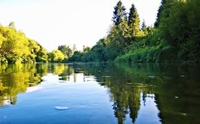 Picture river, Carpathians, Stry