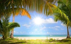 Picture sand, sea, the sun, palm trees, coast, boat