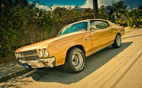 Picture Chevrolet, muscle car, Chevelle, Chevrolet Chevelle
