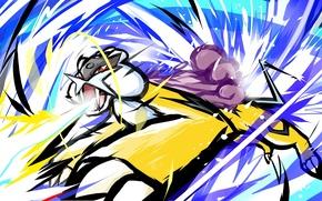Picture Games, Anime, Pokemon, Thunder, Raikou
