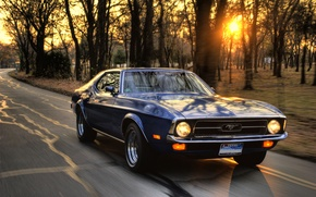 Picture machine, sunset, speed, ford mustang