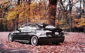 Wallpaper BMW, car Wallpaper, cars, auto wallpapers, bmw, 335i, cars