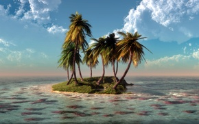 Picture palm trees, island, nature, art, sea, water, corals, klontak, clouds