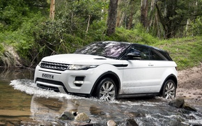 Wallpaper forest, white, trees, stones, coupe, jeep, speaker, Land Rover, range rover, coupe, the front, crossover, ...
