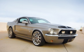 Picture Mustang, Ford, Shelby, GT500KR