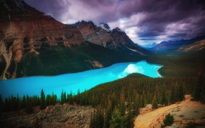Wallpaper forest, the sky, clouds, mountains, clouds, lake, Canada, forest, Banff national Park, Peyto