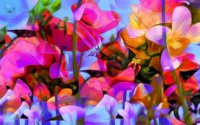 Picture flowers, nature, rendering, paint, figure, plant, vector, petals