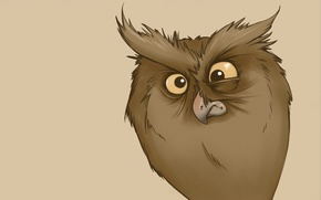Picture owl, minimalism, owl, funny look