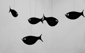 Picture eyes, fish, fish, figure, black