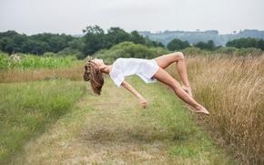 Picture field, girl, flight, Flying