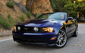 Picture Mustang, Ford, Mustang, convertible, 2010, Ford, Convertible