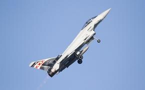 Picture fighter, multipurpose, Eurofighter Typhoon