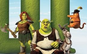 Picture Shrek, tideway donkey, Fiona-barbarian, last, fat cat, forever