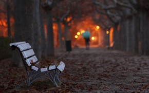 Picture leaves, bench, the evening, Autumn, lights