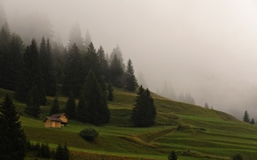 Picture forest, grass, mountains, nature, fog, morning, houses